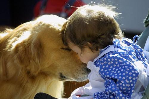 Trzyletnie dzieci i psy wiedzą o co chodzi