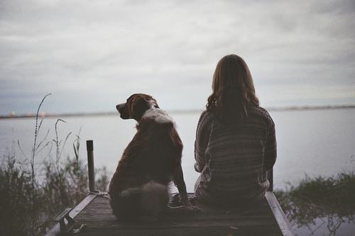 10 rad jak uniknąć problemów z psem