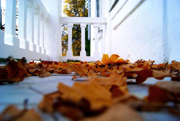 Liście, połamane gałązki, przewrócone doniczki – Jesień zaczyna się od balkonu