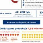 Czy przerobimy wszystkie jabłka? Polscy przetwórcy o sytuacji na rynku owoców